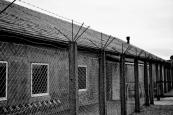 Les baraquements