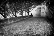 Sur les quais de Seine