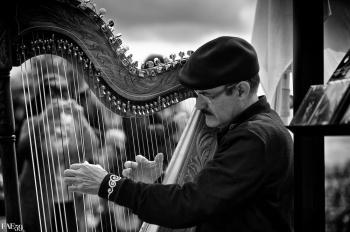 Harpiste de rue