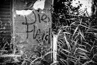 Message de la rue